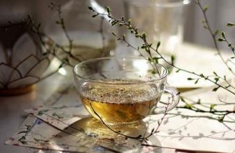 El Té y la Salud
