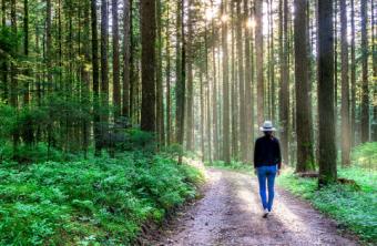4 pasos para vivir en Balance con la Naturaleza.