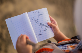 8 Recursos para educar en casa.