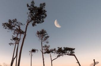 Luna nueva en Tauro y la temporada de Eclipses.