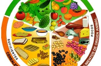 El plato del buen comer: Come saludable sin sacrificios